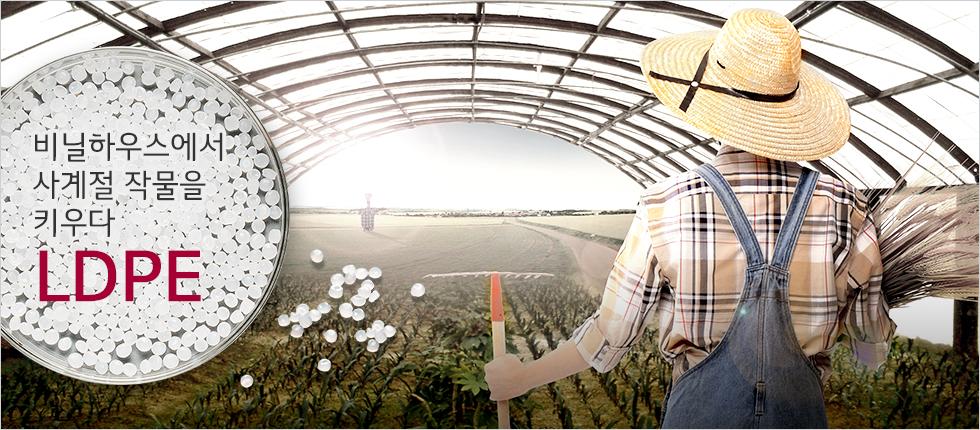 비닐하우스 아래 작물이 자라고 있고, 우측에 농부가 농기구와 수확한 벼를 들고 있는 모습(카피)비닐하우스에서 사계절 작물을 키우다 - LDPE
