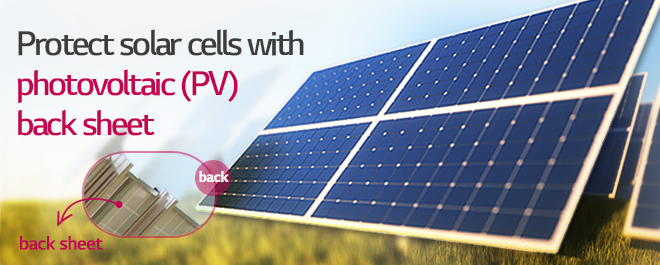 Protect solar cells , <double>back sheet<double> produced by LG Chem is used on the back of a solar cell module.